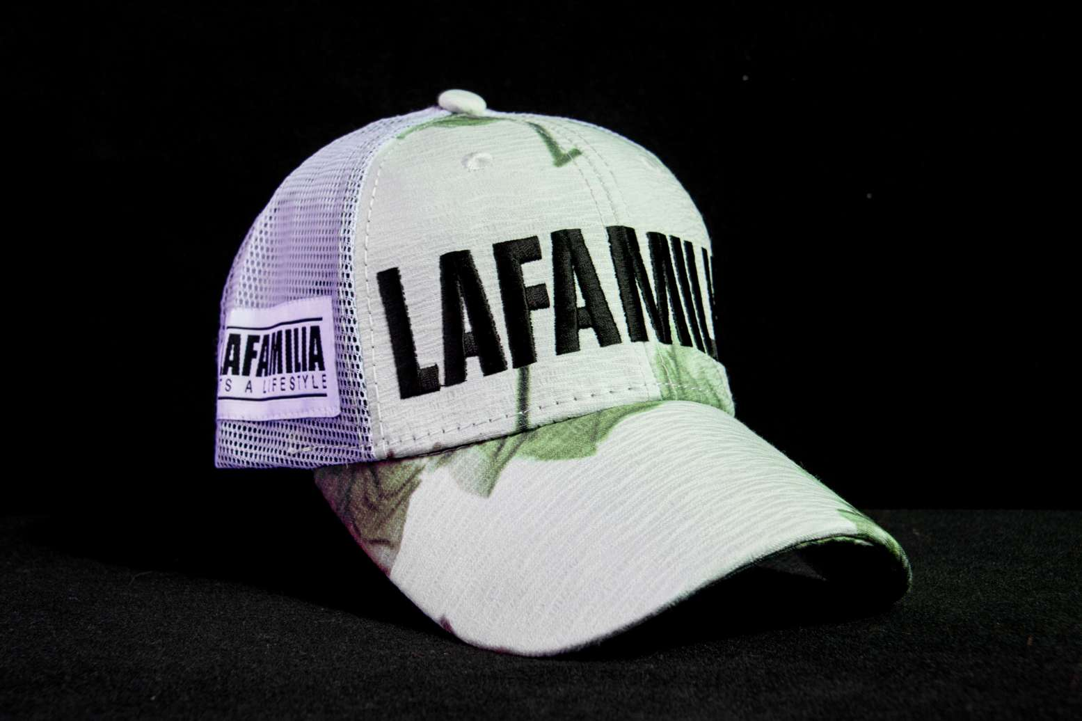 e517014cb79 Snapbacks   Hats – LAFAMILIA WORLD